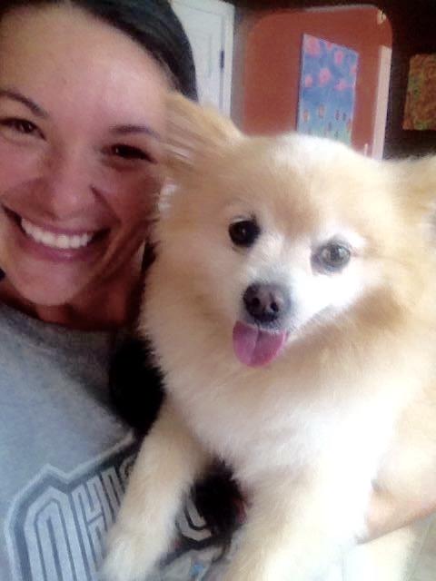 Found dog reunited thru Pet FBI Facebook post